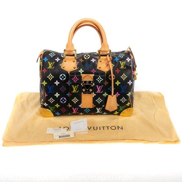 Louis Vuitton Handbags - ⚜️SOLD! ⚜️ Louis Vuitton Speedy 30 Multicolor